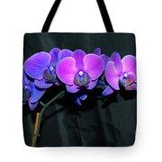 Indigo Mystique Orchids  Tote Bag