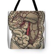 Inferior Mesenteric Artery And The Aorta Tote Bag