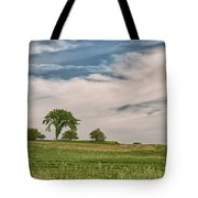 Innisfree Tree 15203c Tote Bag