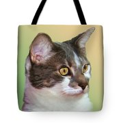 Inquisitive Cat Tote Bag