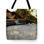 Insect Stripes Tote Bag