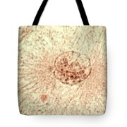 Interphase Tote Bag