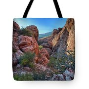 Into The Canyon Tote Bag