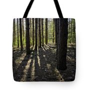 Into The Woods Spnc Michigan Tote Bag