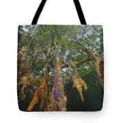 Invertebrate Life Growing On The Roots Tote Bag