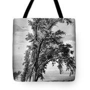 Iowa: Council Bluffs, 1855 Tote Bag