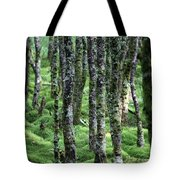Ireland 0001 Tote Bag