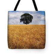 Ireland, Barley Field With Oak Tree Tote Bag