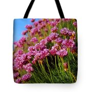 Ireland Close-up Of Seapink Wildflowers Tote Bag