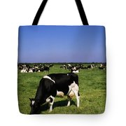 Ireland Friesian Cattle Tote Bag