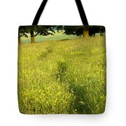 Ireland Trail Through Buttercup Meadow Tote Bag