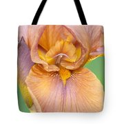 Iris In Gold  Tote Bag