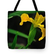 Iris In Yellow Tote Bag