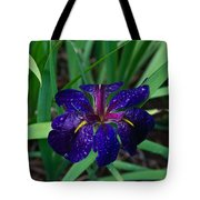 Iris With Rain Drops Tote Bag