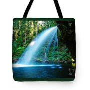 Iron Creek Falls From The Side  Tote Bag