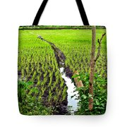 Irrigated Rice Field Tote Bag
