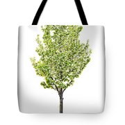Isolated Flowering Pear Tree Tote Bag