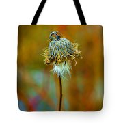 Isolated Locoweed Tote Bag