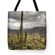 It Does Snow In The Desert Tote Bag