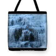 Ithaca Falls New York Closeup Tote Bag