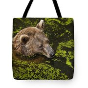 It's Cool In Here Tote Bag