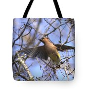 It's Flying Time Again Tote Bag