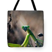 It's Time To Pray Tote Bag