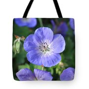 Itty Bitty Pretty One Tote Bag