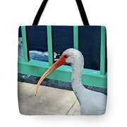 Ivis Ibis And Packy Tote Bag