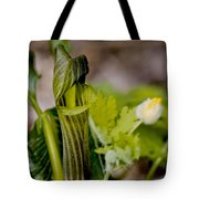 Jack And Rose Together Again Tote Bag