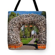 Jackson Hole Tote Bag by Robert Bales