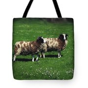 Jacob Sheep Tote Bag