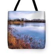 January Bass Pond 2 2012 Tote Bag