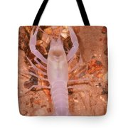 January River Blind Crayfish Tote Bag