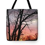 January Sunrise 3 Tote Bag