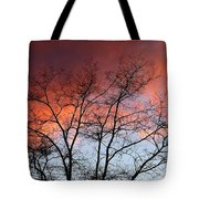 January Sunset Silhouette Tote Bag