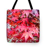 Japanese Maple Leaves 11 In The Fall Tote Bag