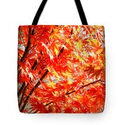 Japanese Maple Leaves 12 In The Fall Tote Bag