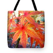 Japanese Maple Leaves 13 In The Fall Tote Bag