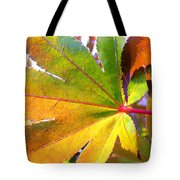 Japanese Maple Leaves 7 In The Fall Tote Bag