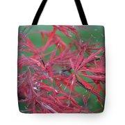 Japanese Red Leaf Maple Hybrid Tote Bag