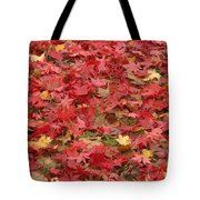 Japanese Red Maple Leaves Tote Bag