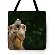 Jaw Dropping Tote Bag