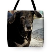 Jean-luc's Dog Tote Bag