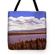 Jenny Lake Panorama Tote Bag