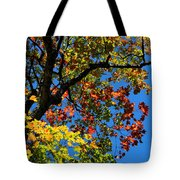 Jewels Of Autumn Tote Bag