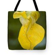 Jewelweed Flower 1 Tote Bag