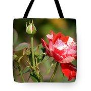 Jh Pierneef Rose Tote Bag