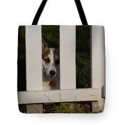 Johnny And The Picket Fence Tote Bag