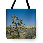 Joshua Trees Number 339 Tote Bag